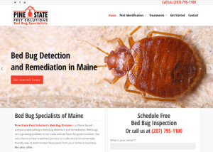 Maine Bed Bugs