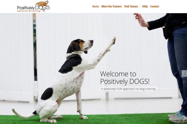 dog-training-web-design